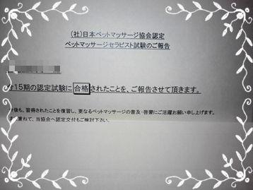 10ncm_0282004
